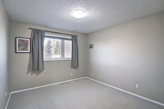 Photo 18: 52 Maple Court Crescent SE in Calgary: Maple Ridge Detached for sale : MLS®# A1092001