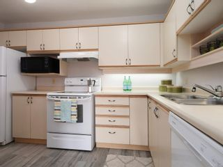 Photo 12: 201 3900 Shelbourne St in : SE Cedar Hill Condo for sale (Saanich East)  : MLS®# 861918