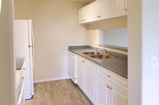 Photo 6: 2305 MILLRISE Point SW in Calgary: Millrise Apartment for sale : MLS®# A1024075