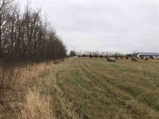 Photo 4: TWP RD 583 Range Rd 271: Rural Westlock County Rural Land/Vacant Lot for sale : MLS®# E4218433
