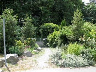 """Photo 14: 20 39754 GOVERNMENT Road in Squamish: Northyards Townhouse for sale in """"MAPLE TREE COURT"""" : MLS®# V1076411"""