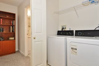 Photo 16: 216 19122 122 Avenue in Pitt Meadows: Central Meadows Condo for sale : MLS®# R2302440