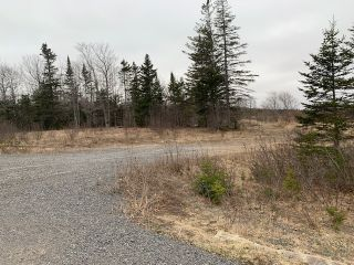 Photo 3: 4401 Highway 358 in South Scots Bay: 404-Kings County Vacant Land for sale (Annapolis Valley)  : MLS®# 202108223