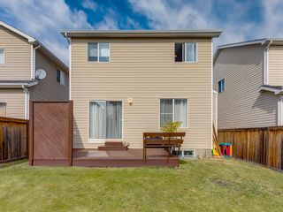 Photo 41: 17 ROYAL ELM Way NW in Calgary: Royal Oak Detached for sale : MLS®# A1034855