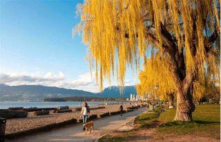 Photo 32: 111 2255 W 8TH Avenue in Vancouver: Kitsilano Condo for sale (Vancouver West)  : MLS®# R2590940