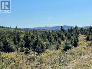 Photo 37: - Saint David Ridge in St. Stephen: Vacant Land for sale : MLS®# NB063465