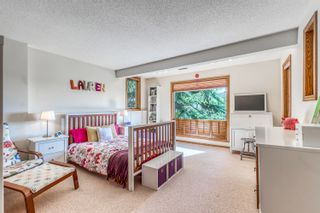 Photo 38: 72 Edelweiss Drive NW in Calgary: Edgemont Detached for sale : MLS®# A1125940