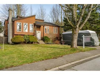 Photo 37: 14951 92A Avenue in Surrey: Fleetwood Tynehead House for sale : MLS®# R2539552