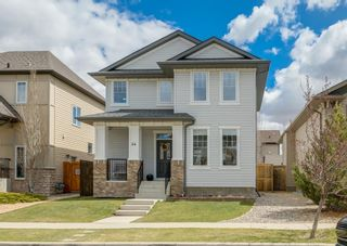 Photo 50: 44 ELGIN MEADOWS Manor SE in Calgary: McKenzie Towne Detached for sale : MLS®# A1103967