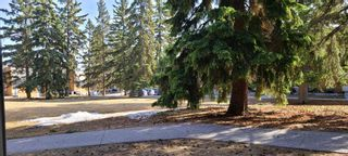 Photo 18: 101 3518 44 Street SW in Calgary: Glenbrook Apartment for sale : MLS®# A1093366