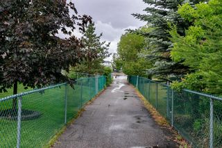 Photo 41: 47 Chapala Landing SE in Calgary: Chaparral Detached for sale : MLS®# A1124054