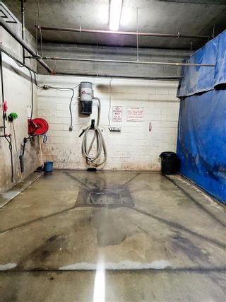 Photo 15: 322 45 INGLEWOOD Drive: St. Albert Condo for sale : MLS®# E4234121
