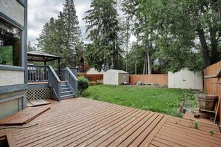 Photo 45: 338 Squirrel Street: Banff Detached for sale : MLS®# A1139166
