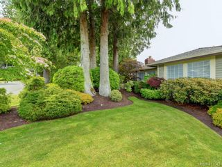 Photo 23: 4731 AMBLEWOOD Dr in VICTORIA: SE Cordova Bay House for sale (Saanich East)  : MLS®# 820003