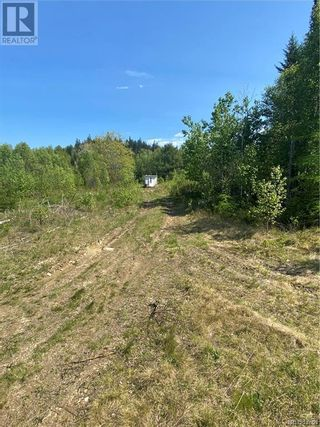 Photo 28: 74.62 Acres Route 127 in Bayside: Vacant Land for sale : MLS®# NB058351