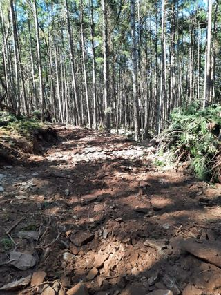 Photo 2: Lot 163 Halibut Hill Rd in : Isl Mudge Island Land for sale (Islands)  : MLS®# 870132