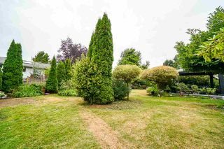 Photo 19: 11830 92 Avenue in Delta: Annieville House for sale (N. Delta)  : MLS®# R2397748
