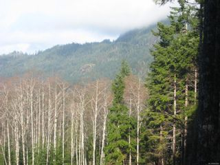 Photo 8: 1230 Cottonwood Rd in : NI Kelsey Bay/Sayward Land for sale (North Island)  : MLS®# 865463