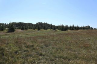 Photo 3: Hwy 622 RR 15: Rural Leduc County Rural Land/Vacant Lot for sale : MLS®# E4261453