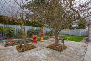 Photo 19: 4163 Shelbourne St in : SE Gordon Head House for sale (Saanich East)  : MLS®# 865988