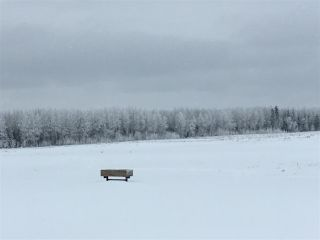 Photo 32: RR74 Twp 514: Rural Parkland County Rural Land/Vacant Lot for sale : MLS®# E4183435