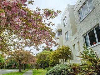 Photo 33: 10 900 Park Blvd in Victoria: Vi Fairfield West Condo for sale : MLS®# 867164