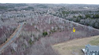 Photo 3: Lot 7 Powell Road in Little Harbour: 108-Rural Pictou County Vacant Land for sale (Northern Region)  : MLS®# 202109707