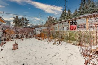 Photo 10: 4624 22 Avenue NW in Calgary: Montgomery Detached for sale : MLS®# A1055200