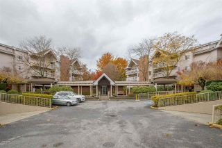 "Photo 1: 204 2973 BURLINGTON Drive in Coquitlam: North Coquitlam Condo for sale in ""BURLINGTON ESTATES"" : MLS®# R2516891"