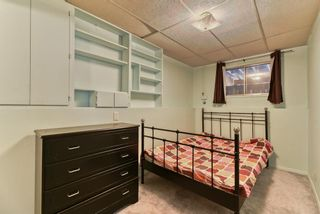 Photo 23: 167 Templevale Road NE in Calgary: Temple Semi Detached for sale : MLS®# A1140728