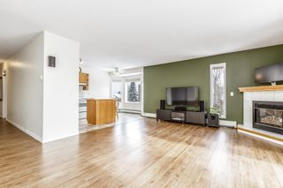 Photo 7: 303 1715 35 Street SE in Calgary: Albert Park/Radisson Heights Apartment for sale : MLS®# A1068224