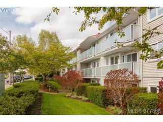 Photo 1: 305 3180 Albina St in VICTORIA: SW Tillicum Condo for sale (Saanich West)  : MLS®# 757679