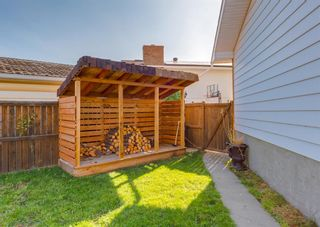 Photo 32: 163 Whiteview Close NE in Calgary: Whitehorn Detached for sale : MLS®# A1146793