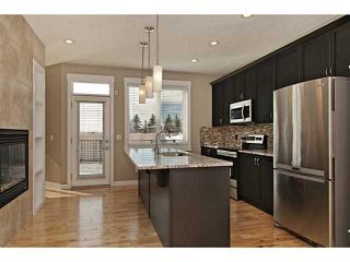Photo 3: 113 Rainbow Falls Boulevard: Chestermere House for sale : MLS®# C3656518