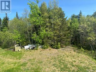 Photo 12: 74.62 Acres Route 127 in Bayside: Vacant Land for sale : MLS®# NB058351