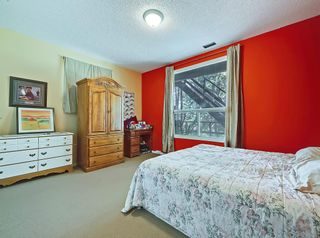 Photo 24: 75 Anatapi Lane SW in Calgary: Springbank Hill Detached for sale : MLS®# A1099057