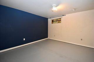 Photo 21: 16 CASTLEGROVE Place NE in Calgary: Castleridge Detached for sale : MLS®# C4208662