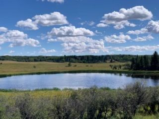 Photo 18: 10 176142 Hwy 549 W: Rural Foothills County Land for sale : MLS®# A1117268