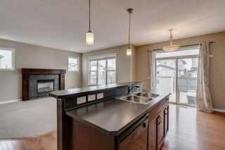 Photo 9: 1571 COPPERFIELD Boulevard SE in Calgary: Copperfield Detached for sale : MLS®# A1107569