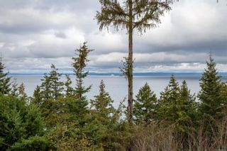 Photo 64: 321 Wireless Rd in : CV Comox (Town of) House for sale (Comox Valley)  : MLS®# 860085