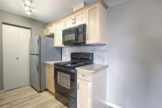 Photo 9: 3312 13045 6 Street SW in Calgary: Canyon Meadows Apartment for sale : MLS®# A1126662