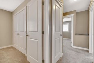 Photo 15: 144 Evansdale Common NW in Calgary: Evanston Detached for sale : MLS®# A1131898
