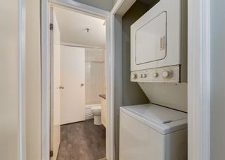 Photo 25: 110 727 56 Avenue SW in Calgary: Windsor Park Apartment for sale : MLS®# A1133912