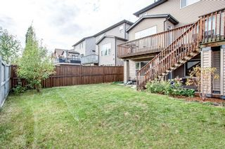 Photo 42: 56 BRIGHTONWOODS Grove SE in Calgary: New Brighton Detached for sale : MLS®# A1026524