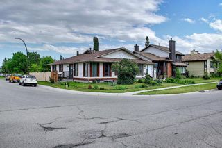 Photo 47: 217 Templemont Drive NE in Calgary: Temple Semi Detached for sale : MLS®# A1120693