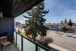 Photo 17: 301 2722 17 Avenue SW in Calgary: Shaganappi Apartment for sale : MLS®# A1098197