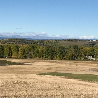 Photo 8: 39-33048 Range Road 51: Rural Mountain View County Land for sale : MLS®# A1085992