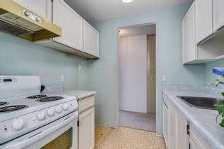 """Photo 4: 309 331 KNOX Street in New Westminster: Sapperton Condo for sale in """"WESTMOUNT ARMS"""" : MLS®# R2616946"""