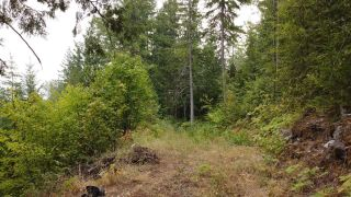 Photo 10: 8655 PROCTER EAST ROAD in Procter: Vacant Land for sale : MLS®# 2460291