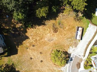 Photo 10:  in : Vi Rockland Land for sale (Victoria)  : MLS®# 858932